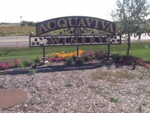 Your Napa Valley (Acquaviva Winery) Wedding  without leaving Illinois